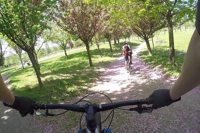 Bike Discovering Tour - Mix, Braga, PORTUGAL