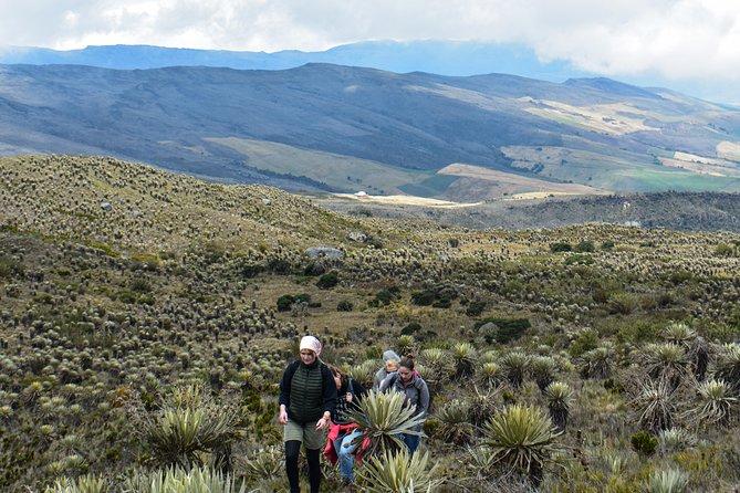 Caminata al Páramo de Sumapaz, Bogota, COLOMBIA
