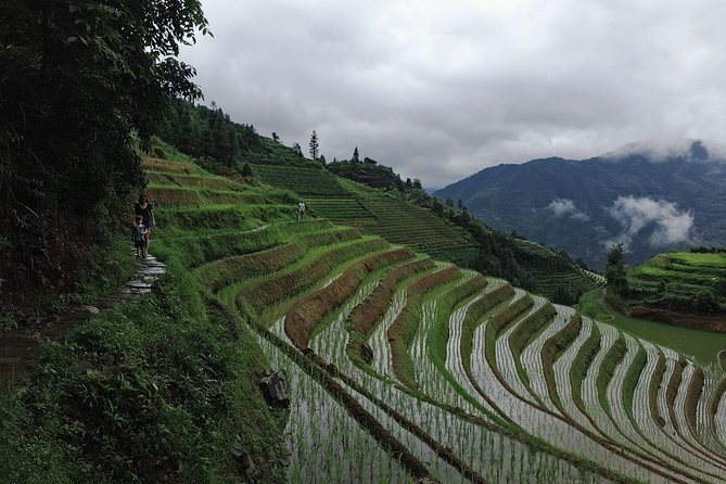 Visit the highlights of Guilin including the Longji rice terraces, Huangluo Long hair village and hiking/shuttle bus around the Ping'an village with this self-guided day tour from Guilin(We just provided the English speaking driver, no tour guide).<br>You will be picked up and dropped off from your Guilin/Yangshuo/Xingping hotel.