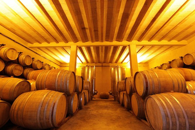 Winery Tour and Wine Tasting in Carcassonne, ,