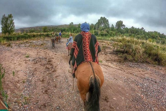 Horseback riding through vineyards with gourmet roast lunch, Mendoza, ARGENTINA