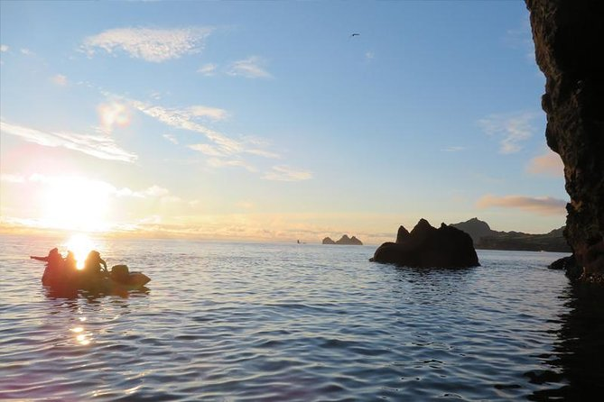 A brilliant, 1-hour RIB boat tour in the Westman Islands where we will explore sea caves, remote beaches and the stunning cliffs where the puffin and the common murre lay their eggs.