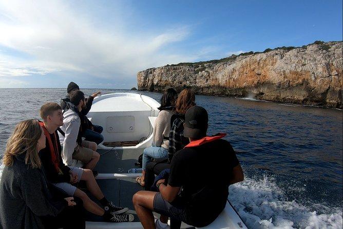Recorrido completo en barco por Arrábida, Distrito de Setúbal, PORTUGAL