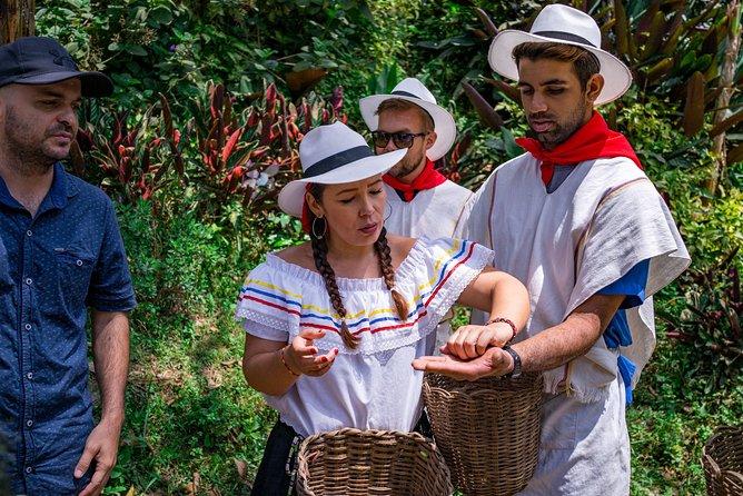 Recorrido sobre el café en Medellín, Medellin, COLOMBIA