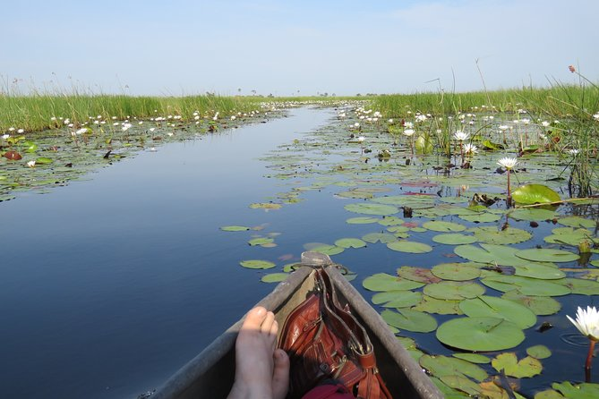 Authentic Okavango Delta experience with local people showing you their country. A comfortable wildcamping tour, fully-catered and non-participatory.<br>This is the most authentic way to explore the small channels and islands of the Okavango Delta. Tranquility and nature experience.
