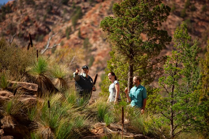 Wilpena Pound Resort is the only accommodation located within the Ikara-Flinders Ranges National Park, 430km north of Adelaide. This extraordinary landscape is 800 million years old and has been home to Adnyamathanha people for tens of thousands of years. Enjoy a haven of outback hospitality in a resort with a restaurant, bar/bistro, swimming pool and general store.<br><br>This package includes a 4WD tour with a local Aboriginal guide, and a fixed wing scenic flight over Wilpena Pound and the Flinders Ranges.<br>- Enjoy fantastic aerial views<br>- Get off the beaten track in a 4x4<br>- See native wildlife in their natural environment<br>- Daily breakfast included<br>- Multi-Day Trip<br><br>Visit the South Australian outback and soak up the incredible beauty of one of the earth's oldest landscapes.