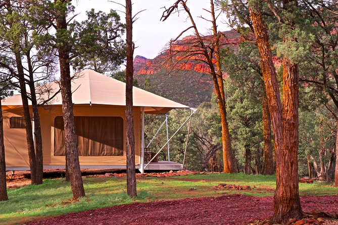 Located at the entrance to Wilpena Pound, the Ikara Safari Camp is the only accommodation located within the Ikara Flinders Ranges National Park. This extraordinary landscape is 800 million years old and has been home to Adnyamathanha people for tens of thousands of years.<br><br>The ultimate Outback 'glamping' experience, each of the 15 safari tents has a king size bed (can be split), modern ensuite bathroom, luxury amenities, reverse cycle air-conditioning, power and a private deck and fire pit. All tents are positioned to offer magnificent views of the sunset over Wilpena Pound. <br><br>Guests have access to all facilities including the restaurant, bar, pool and general store. The on-site Visitor Information Centre offers Aboriginal cultural guided walks by Adnyamathanha guides, as well as 4WD tours, bicycle hire and the 'must do' scenic flights over Wilpena Pound and Lake Eyre. <br><br>The property is home to an abundance of native wildlife including kangaroos, emus and wedge-tail eagles.<br>