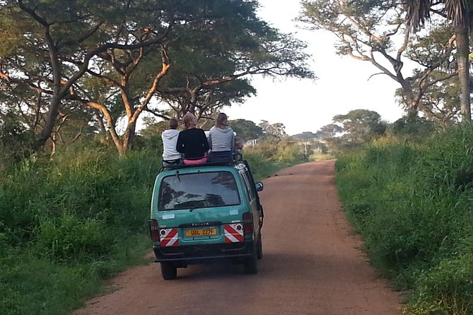 This day trip to Murchison Falls National Park is tailored to travelers desiring to see only the Murchison falls OR select attractions in a single day. Its commonly suitable for Masindi residents, stop-overs, budget travelers, and sometimes, conference delegates.