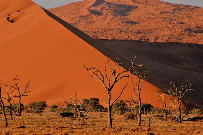 MÁS FOTOS, 3-Day Private Namib Desert and Naukluft Park from Swakopmund