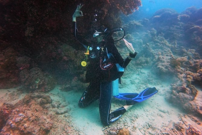 Great and professional Instructors <br>Fast in service <br>Very Good Experience to dive in the Red Sea .<br><br>