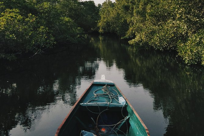 Join a 90-minute cruise on the Cherating River for a wildlife-viewing ride through the mangroves. Depart in the morning or late afternoon and drift along the tranquil waterway, which stretches for about 4 miles (7 km). You'll learn about the unique ecosystem of this river swamp and spot its resident monkeys.
