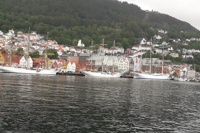 This is one of the cheapest tours in Bergen. After 2 hours you will get knowledge about the city of Bergen from early medieval centuries till our days. We charge per tour not per person. More people in your group less each person will pay.