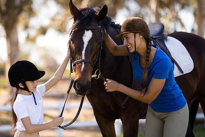 Horse Riding Lesson in Kalamata, Kalamata, GRECIA