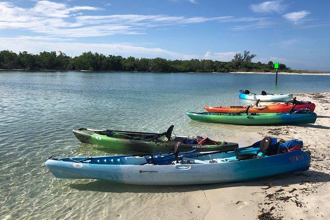 Naples Mangrove Estuary Preserve Kayak Adventure Tour, Naples, FL, UNITED STATES