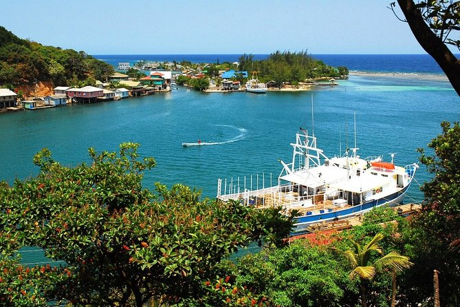 Shore Excursion: A Taste of Roatan Island Cuisine and Culture, Roatan, HONDURAS