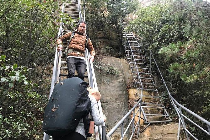 MÁS FOTOS, 5 Days Zhangjiajie Forest Park Fully Exploring Hiking Tour(5-star Hotel)