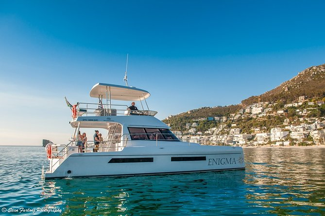 MORE PHOTOS, Cruise and Dine Lunch / Cape Town: Coastal Motor Cruise and 2-Course Lunch