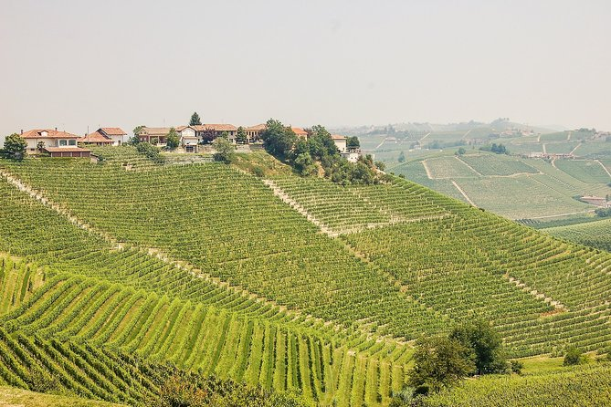 Barolo Land - From Alba, Langhe-Roero y Monferrato, ITALIA