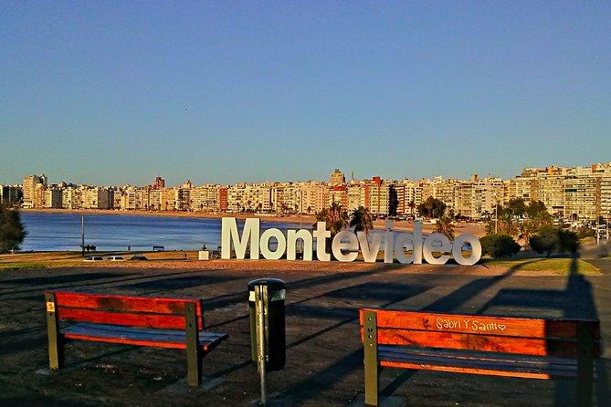 Best Private Montevideo Shore Excursion: City Tour. Optional WineTasting Tour., Montevideo, URUGUAY