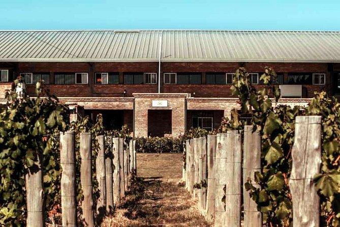 Maipu Cuna del Vino, Mendoza, ARGENTINA