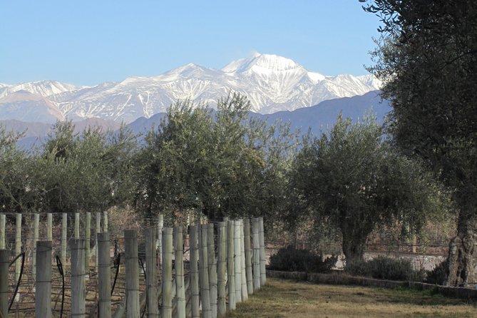 Lujan Clásico, Mendoza, ARGENTINA