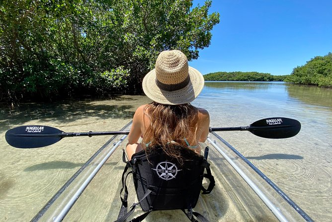 Our tours are done in CRYSTAL CLEAR KAYAKS! Clear kayaking allows you to have an immersive perspective on the unique wildlife and nature we have here in Florida - its the best window seat to the waters of Tampa Bay!