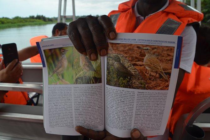 Passeio no rio Kwanza, Luanda, ANGOLA