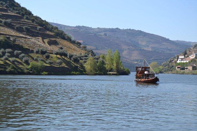 Recorrido vinícola por el Valle del Duero: visita a tres viñedos con catas y almuerzo, Oporto, PORTUGAL
