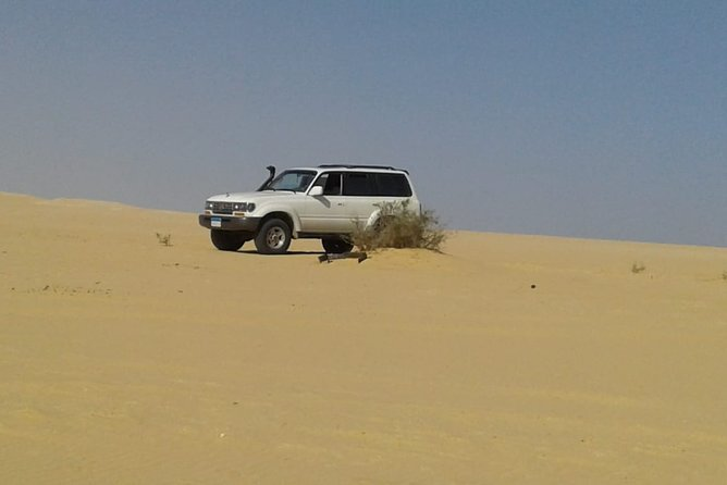 This excursion will take you to Bahariya Oasis in the Western Desert and then out into the surrounding desert to see the unique regions known at the Black and White Deserts in a unique adventure experience.<br>