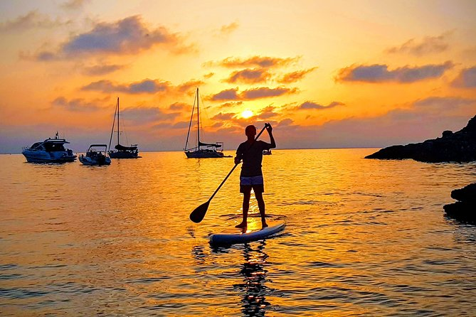 The paddle board is perhaps the best way to discover the Mediterranean coast. At your own pace, as close as possible to nature, and far off the beaten track. This activity is accessible to all.<br>Departure by boat with all the equipment on board.