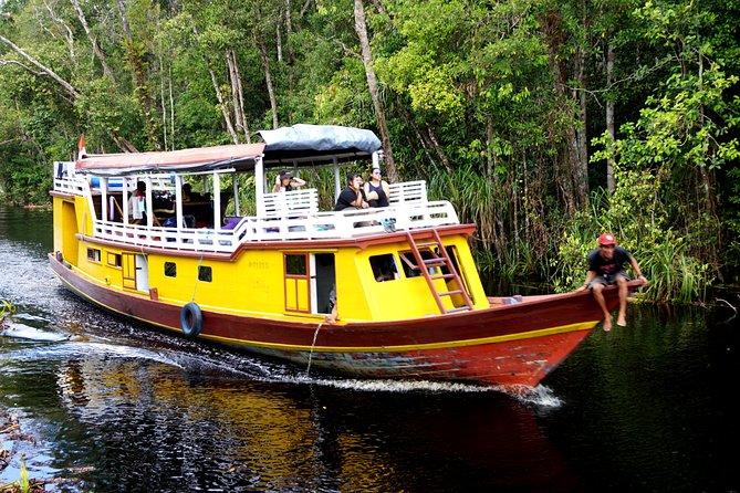 If you want to see orangutans in their natural habitat, we will take you to Tanjung Puting National Park by houseboat or klotok. <br><br>The tour will explore the Sekonyer River to meet the orangutan and other wildlife in the jungle.