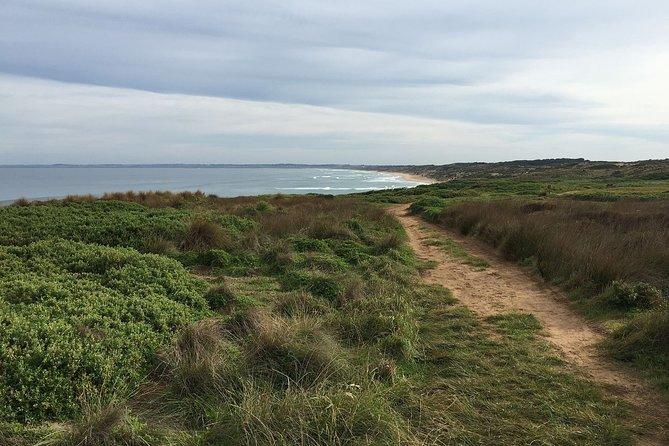 Phillip Island Walking & Bird Watching Tour, Peninsula de Mornington, AUSTRALIA