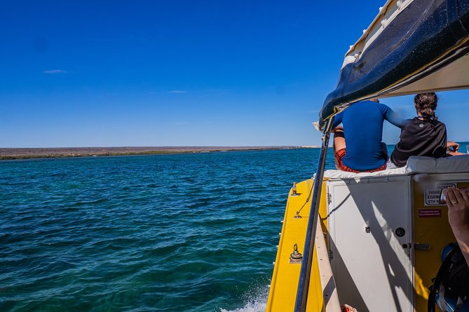 Looking to experience breathtaking Ningaloo with just your friends and family? Like to escape the crowds?<br><br>If so, then our Private Charters around Ningaloo and the Stunning Muiron Islands area greatoption for you.<br>Let us know what your interests are, what you would like to do and we can tailormake a tour specifically for you.<br>The NW region has a lot more to offer besides whale sharks and we take great pleasure in offering you the opportunity to find those treasures! <br>We have many options for you, from searching for megafauna such as Blue Whales and Killer Whales, to exploring isolated and rarely seen Islands. Spend the day searching for snorkel sites and ship wrecks whilst looking out for the abundance of species of wildlife and soaking in the natural beauty the Ningaloo is famous for.<br>Just give us a call, text or email to discuss what we have to offer.<br>Check out our tours page or get in contact with us for more information.<br><br>