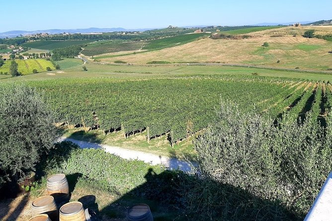 Transfer with stops: Assisi - Florence with stop in Montepulciano and Cortona, Assisi, ITALIA