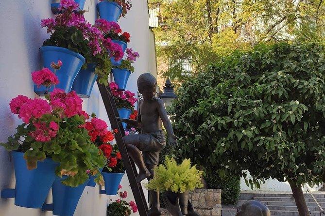 Córdoba Highlight Walking Tour, Cordoba , ESPAÑA