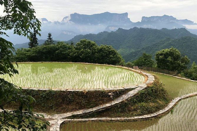 MÁS FOTOS, 4 Days Zhangjiajie Highlights with Rice Terrace Tour(5-star Hotel)