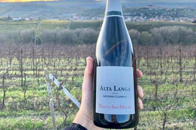 MÁS FOTOS, Private Wine Tasting Selection in Castagnole delle Lanze