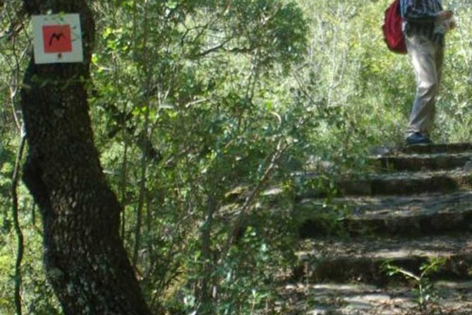 Menalon Trail hiking experience, Kalamata, GRECIA