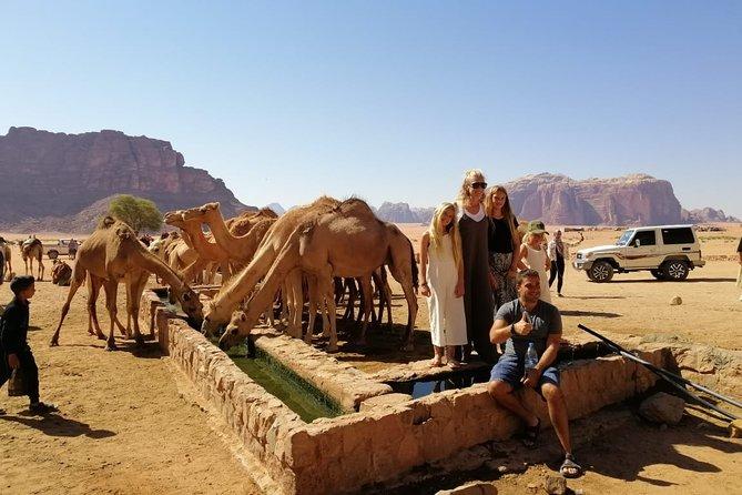 Petra & Wadi Rum in 3 Days from Amman Airport, Aman, Jordan