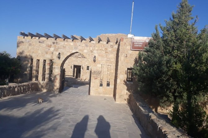 Tour privado en Petra y Castillo Shobak desde Amán, Aman, JORDANIA
