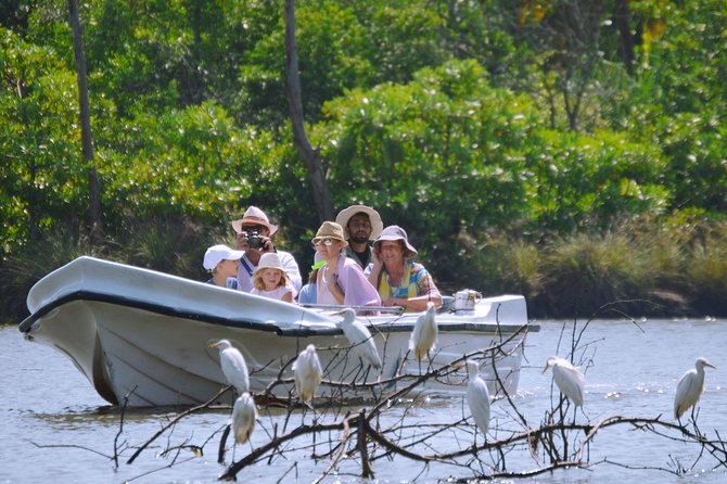 (SKU: LK75050100)This boat safari gives you an opportunity to watch the avifauna of Muthurajawela, one of the most famous bird sanctuaries in Sri Lanka. Go on a wonderfully relaxing boat ride on the lagoon of Negombo. See the complex ecosystem of the marshlands. Watch the many water birds and others through your binoculars. Get the assistance of your professional bird guide to identify and learn more about them. Enjoy a picnic breakfast as you drift along the lagoon surrounded by nature.