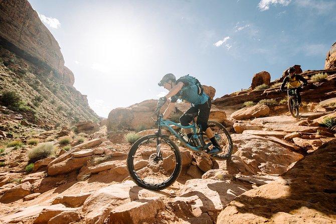 Aventura de dia completo de bicicleta de montaña en los Andes, Mendoza, ARGENTINA