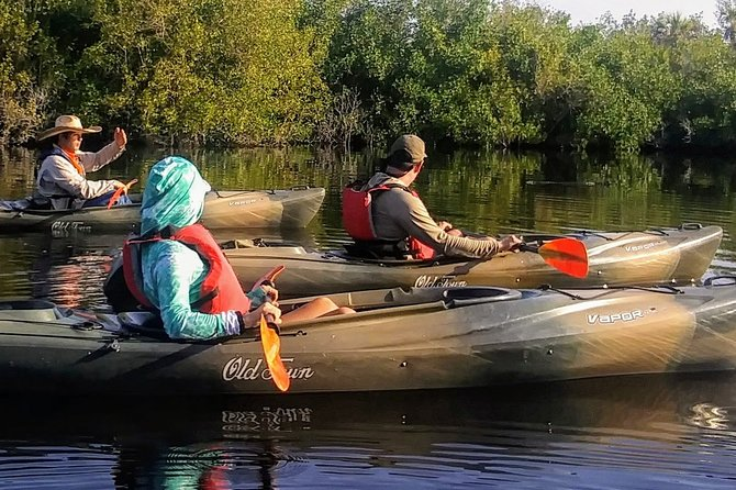 MAIS FOTOS, Kayak the Everglades Mangrove Forest and Marsh Prairies with Wildlife Viewing!