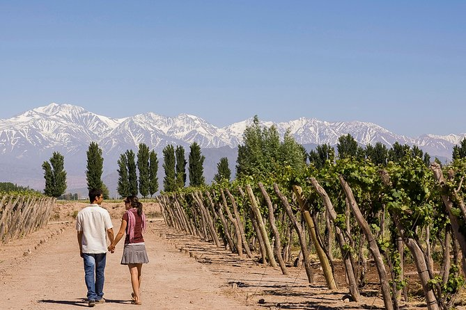 Best of Santiago de Chile & Mendoza in 7 Days, ,