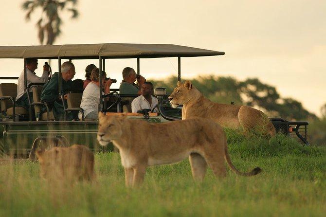 3-Day Chobe National Park Camping Safari from Victoria Falls, Cataratas Victoria, ZIMBABUE