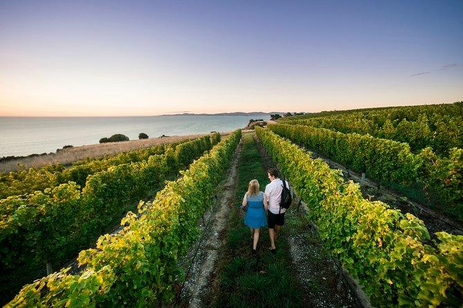 Private Marlborough Winery Tour, Picton, NOVA ZELÂNDIA