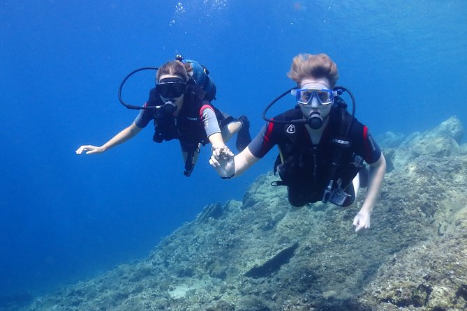 Discover in safety the unique beauty of Halkidiki's undersea world with this introductory dive. Find outwhat it's like to breathe underwater, feel weightless and totally free under the waves,
