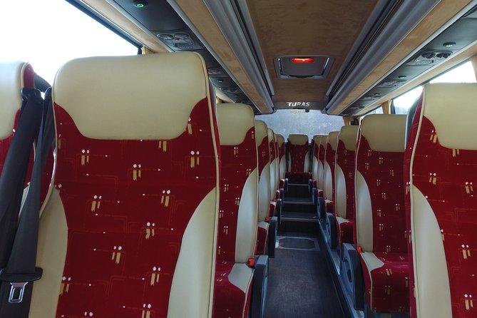 Recorrido de un día guiado a la Calzada del Gigante desde Belfast en cómodo autobús, Belfast, IRLANDA