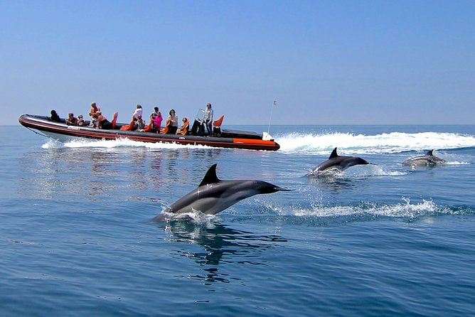 See Portugal's coast on this boat trip to see dolphins and caves in the Algarve. Join the amazing dolphin watch to see these magnificent creatures in their natural habitat. Take a magical journey in search of these wild animals then head west towards the amazing caves, rocks formations and beautiful algarvian coastline.