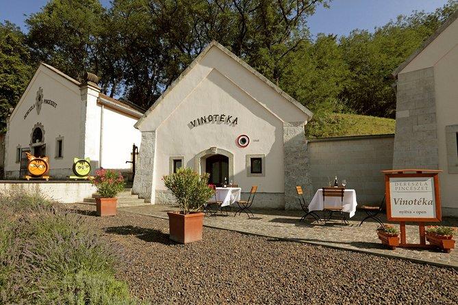 MORE PHOTOS, Private Dereszla Wines Tasting and Local Tapas in Tokaj